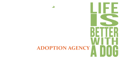 East Coast Adoption Agency